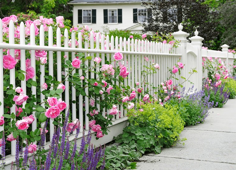 What Is The Best Color To Paint A Garden Fence?