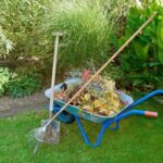 When Should You Clean Your Garden?